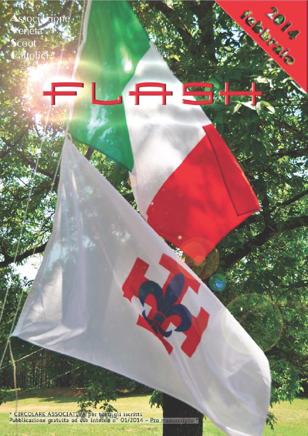 Flash_2_2014